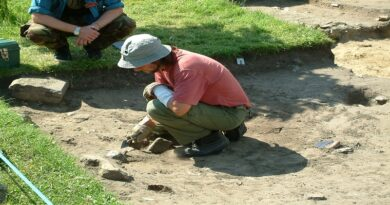 Postgraduate courses in Archaeological Conservation