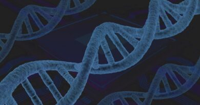 Postgraduate courses in Genetics