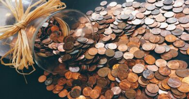 Postgraduate courses in Social Economics